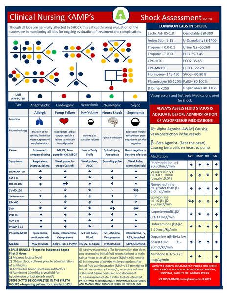 Clinical Nursing KAMP SHOCK Assessment N
