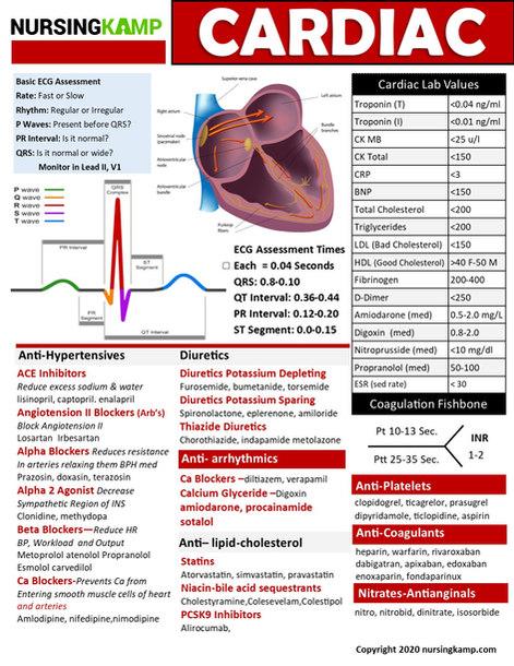 N2N CARDIAC PAGE 2 NURSING KAMP CLINICAL