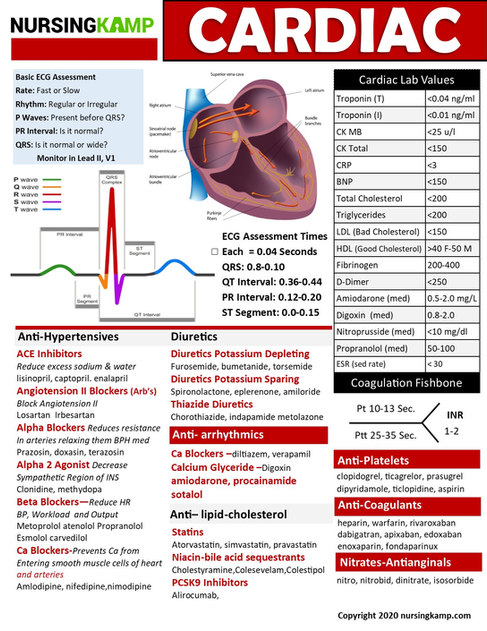 N2N CARDIAC PAGE 2 NURSING KAMP CLINICAL