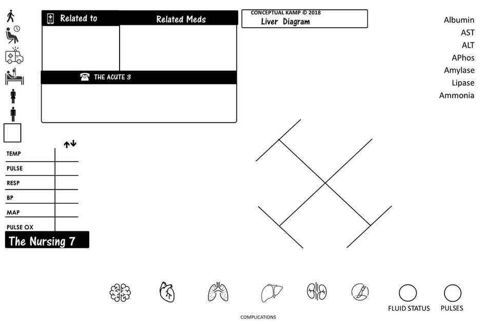 NURSING-KAMP-CONCEPT LAB Liver Diagram.j