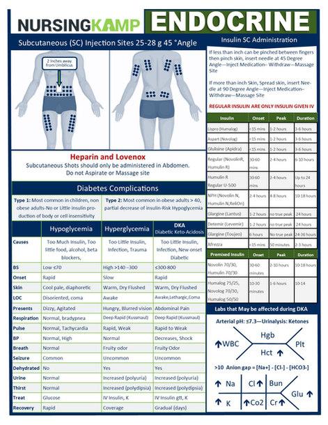 N2N ENDOCRINE  PAGE 1 NURSING KAMP CLINI