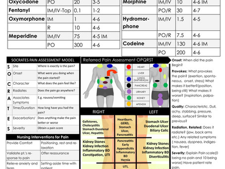Med Surg 1 Clinical Brain Sheet Book
