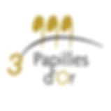 PAPILLES-3.png