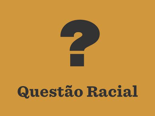 A SUB-REPRESENTAÇÃO RACIAL NAS CÂMARAS LEGISLATIVAS