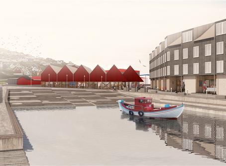 Forslag til helhedsplan for bådelejet i Toftir