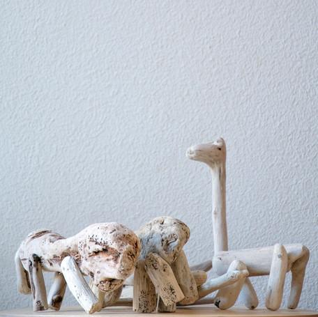 toy design / sea toys