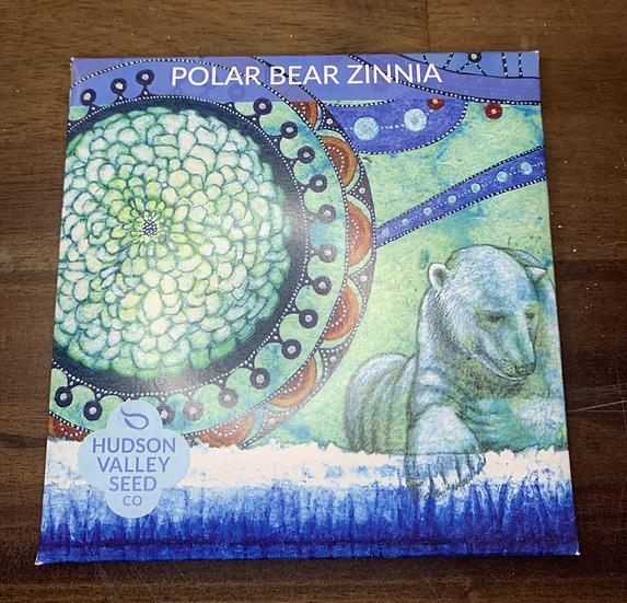 Polar Bear Zinnia - Hudson Valley Seed Co.