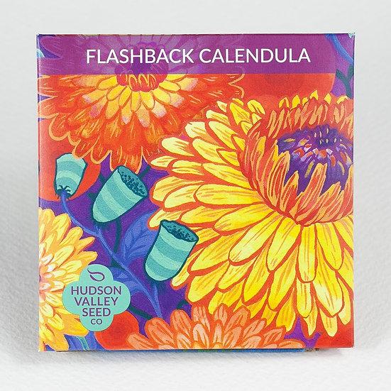 Hudson Valley Seed Co. Flashback Calendula Flower Seed Packet