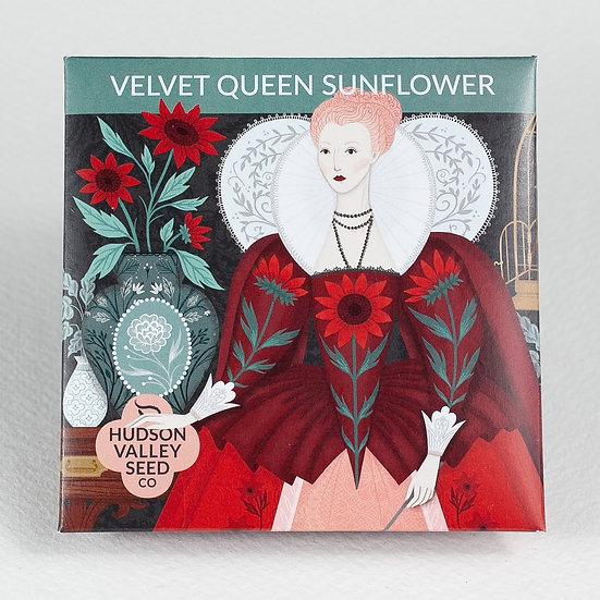 Hudson Valley Seed Co. Velvet Queen Sunflower Seed Packet