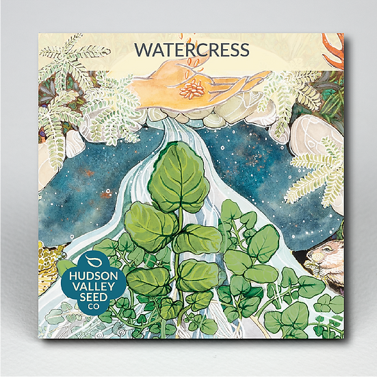 Hudson Valley Seed Co. Watercress
