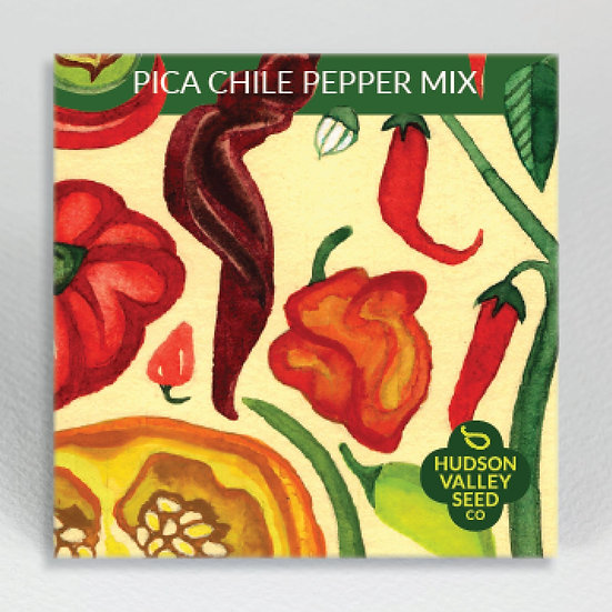 Hudson Valley Seed Co. Pica Chile Pepper Mix Seed Packet