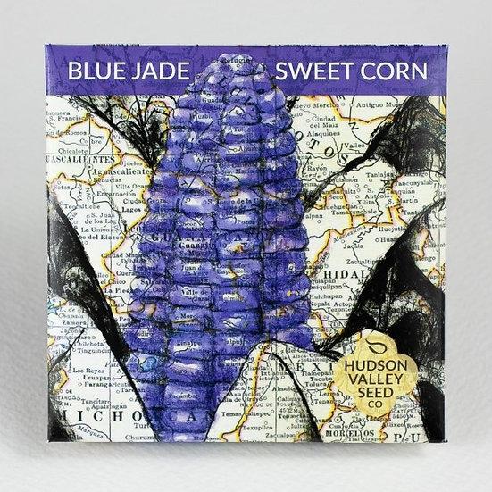 Hudson Valley Seed Co. Blue Jade dwarf Sweet Corn