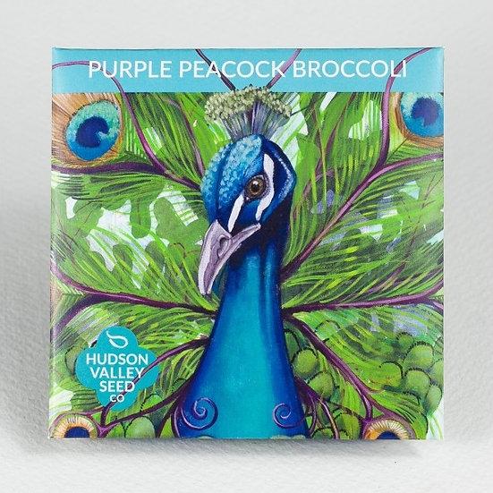 Hudson Valley Seed Co. Purple Peacock Broccoli