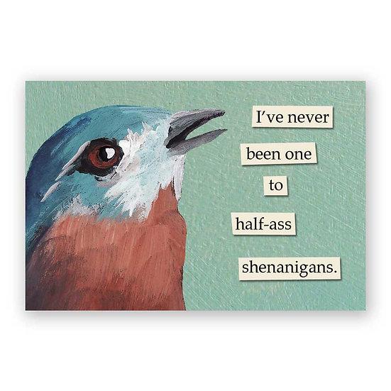 Shenanigans Magnet
