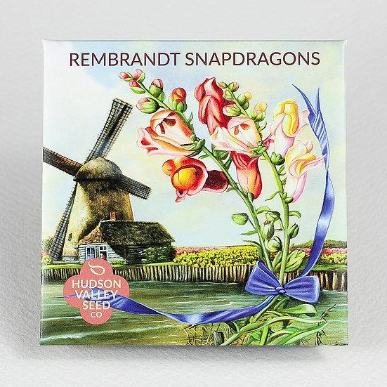 Hudson Valley Seed Co. Rembrandt Snapdragons