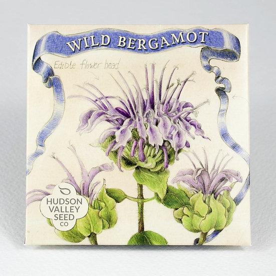 Hudson Valley Seed Co. Wild Bergamot Flower Seed Packet