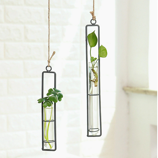 Hanging propagators or stem vase