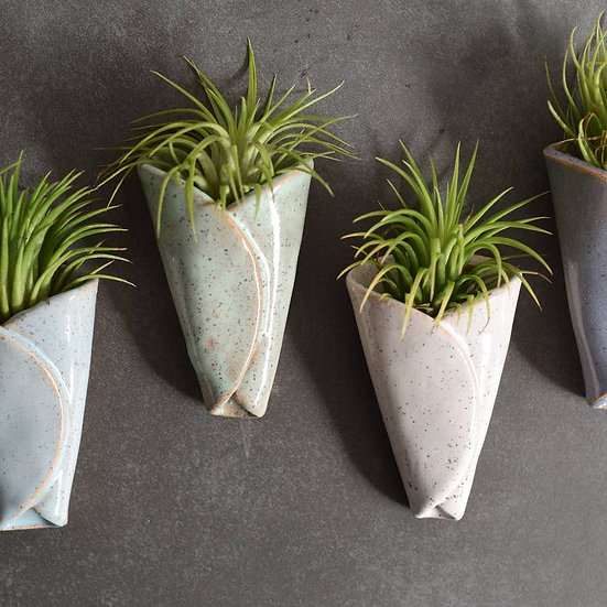Air Plant Holder - CONE