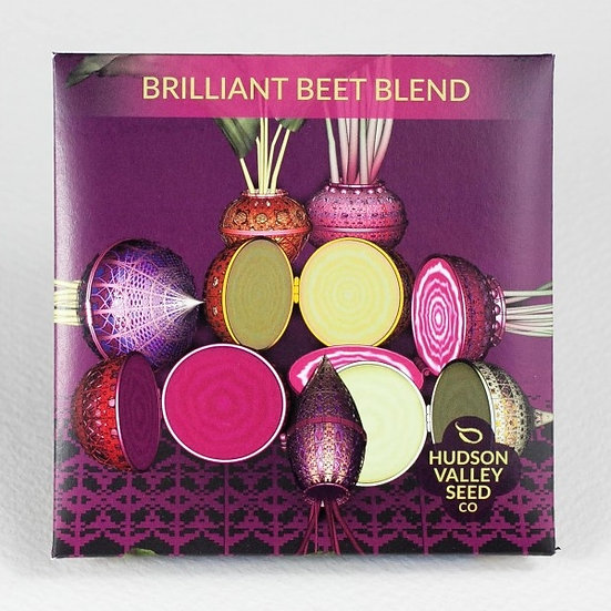 Brilliant Beet Blend - Hudson Valley Seed Co.