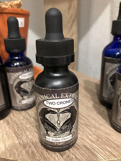 Botanical Extracts Angelica Root Oil Dropper Bottle