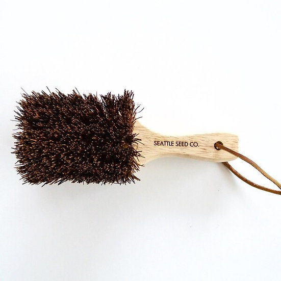 Seattle Seed Co. Potting Bench Brush