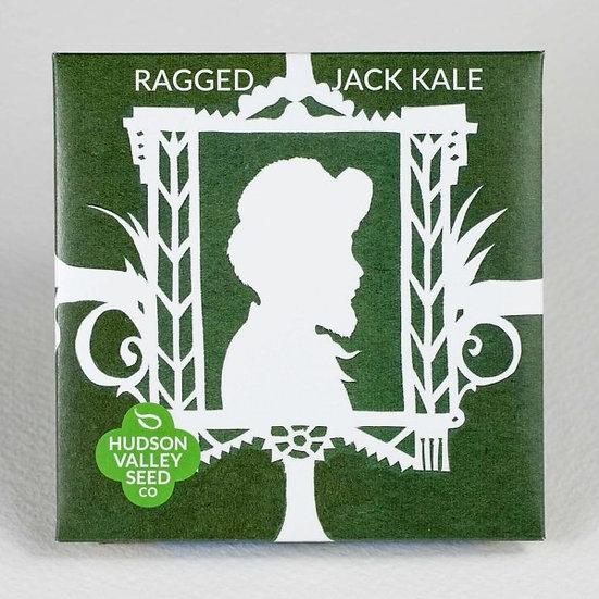 Hudson Valley Seed Co. Ragged Jack Kale