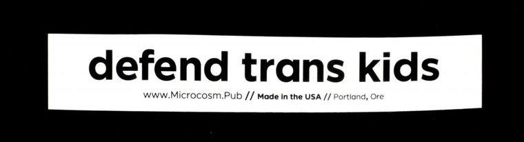 Defend Trans Kids sticker