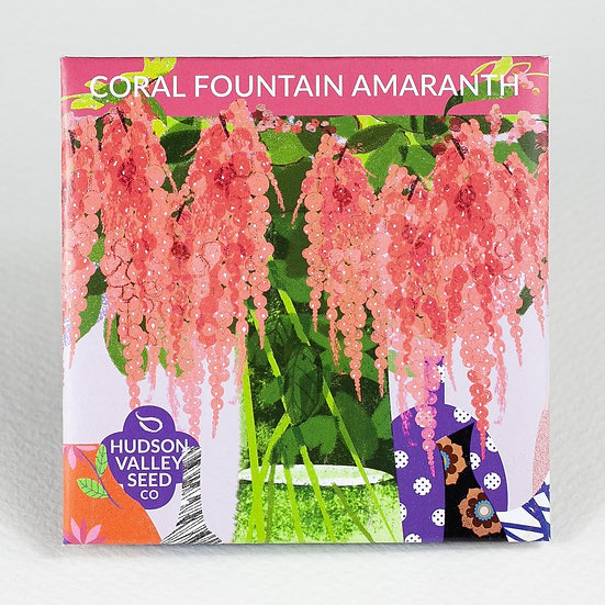 Coral Fountain Amaranth Flower Seed Packet