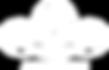 лого 2 на прозрачном фоне.png