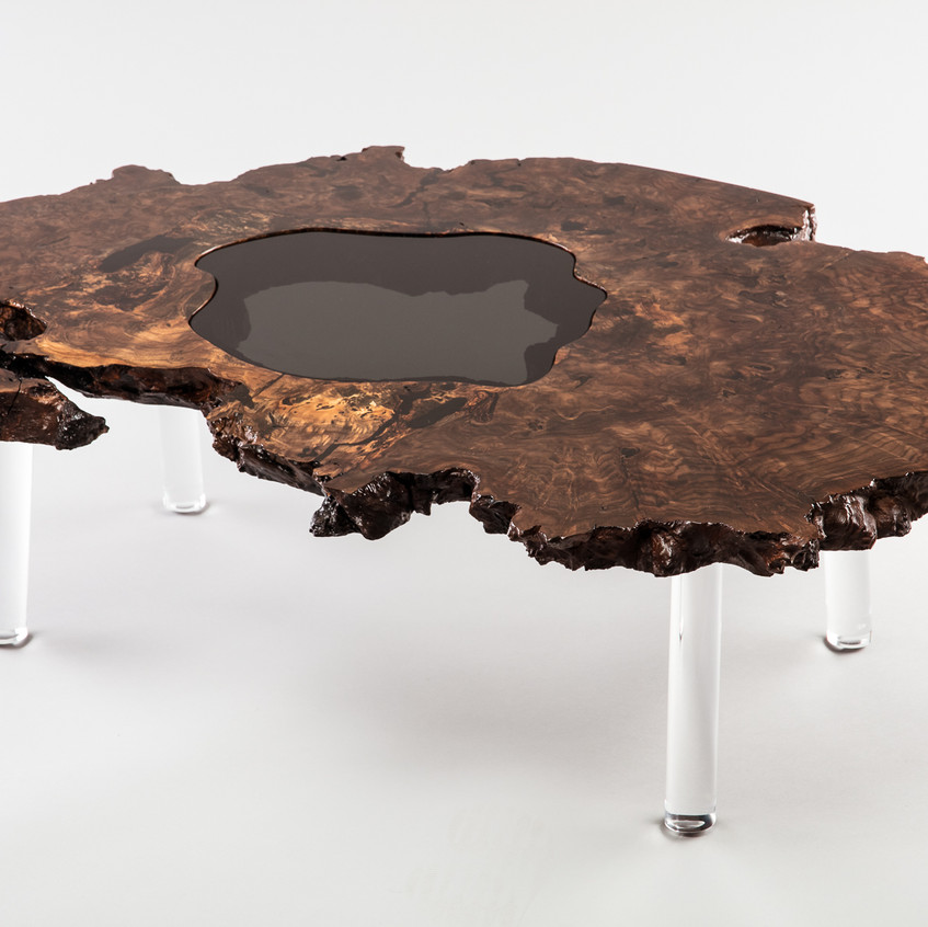 Claro Walnut live edge root ball coffee table with smoked glass inlay on polished lucite legs.