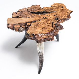 Olive Burl Live Edge on Polished Reclaimed Horn Leg Western Rustic End Table