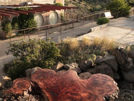 LumberLust at Arcosanti, AZ