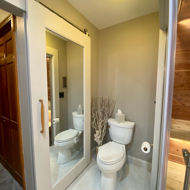 Double sided mirrored barn door