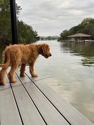 Otto Lake.jpg