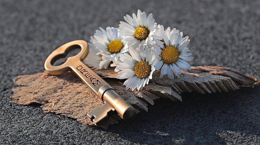 the-dream-key-clive-littin.jpg