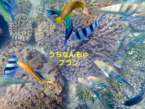 image5_edited.jpg