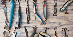 Catching fish, website traffic and blogging