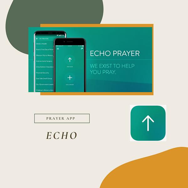 Echo-2.png
