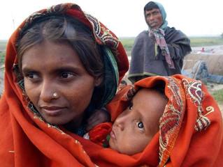 Rohingya / Rakhine Discourse