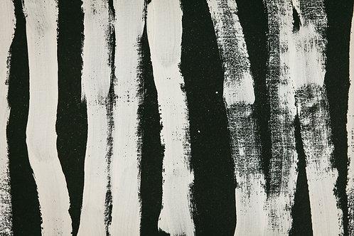 Black & White by Huebert World