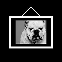 Picture Frames, Frame an Artwork, Frame a Picture, Printing & Framing, Frames Online
