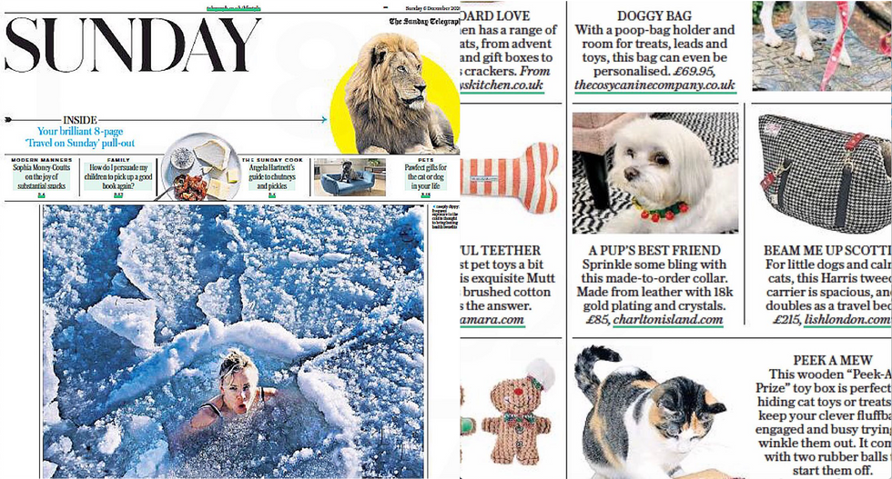 Sunday Telegraph Teddi Collar.png