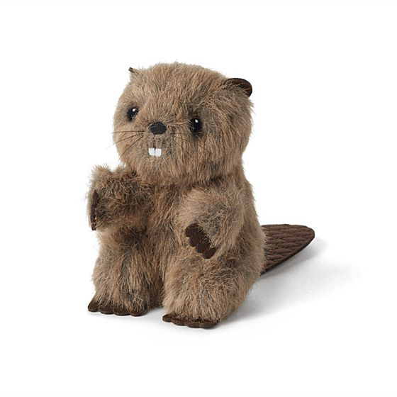 Beaver- $26