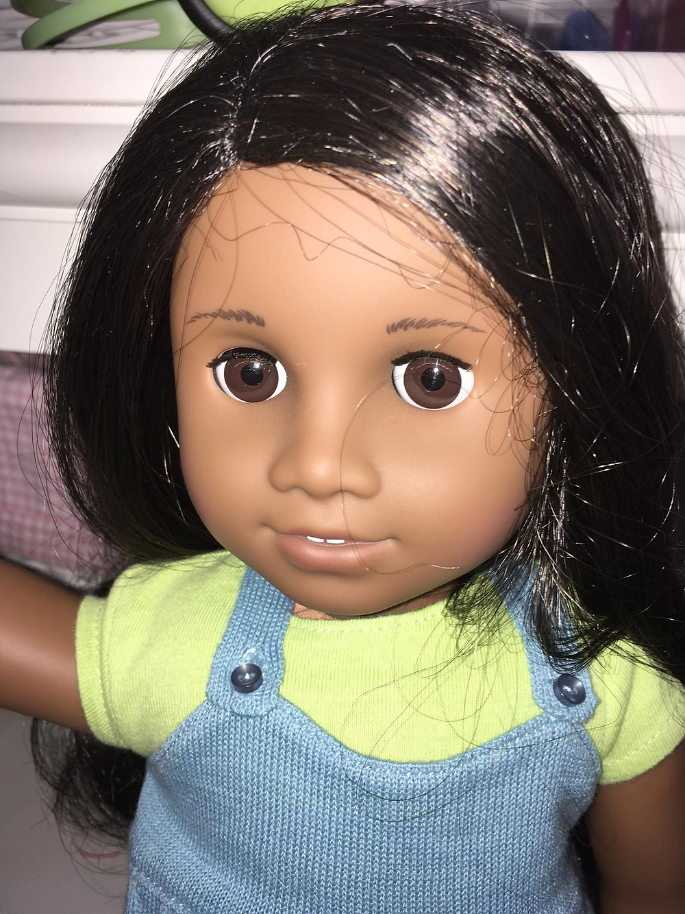 American Girl Sonali, American Girl Of The Year, American Girl Of The Year 2009, American Girl Doll Of The Year 2009