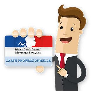 carte-pro-icon.png