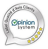 opinion-system-2.jpg