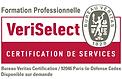 VeriSelect_Formation_Professionnelle-2.p
