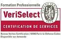Formation certifée VeriSelect - Ma formation DDA