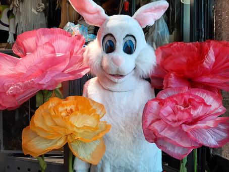 Mascottes de Pâques (Poules et Lapins), en location