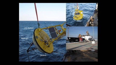 OA Time-series at Gray's Reef